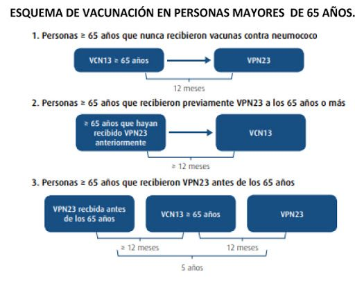 vacunacion cardiologiaonline.info